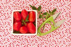 Free Freshly Harvested Cherry Tomatoes Royalty Free Stock Photo - 23272145