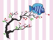 Free Twitting Fish Royalty Free Stock Photography - 23274657
