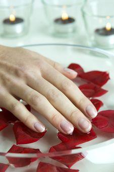 Free Female Hand Stock Photos - 23276883