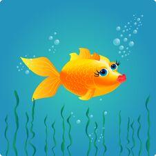 Free Nice Goldfish Stock Photo - 23277470