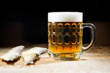 Free Beer With Dry Salty Fish Stock Images - 23279694