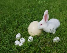 Free Rabbit And Eggs On A Grass Royalty Free Stock Photos - 23284468