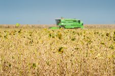 Free Combine Harvesting Soybeans Royalty Free Stock Images - 23285609