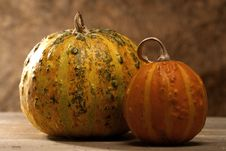 Free Pair Of Pumpkins Stock Photography - 23289182