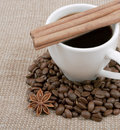 Free Bob Of Coffee, Anise And Cinnamon Royalty Free Stock Photo - 23290815