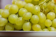 Free Grape Stock Photography - 23292232