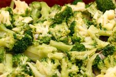 Boiled Broccoli Royalty Free Stock Photography