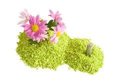 Free Flower Power Stock Photo - 2331420