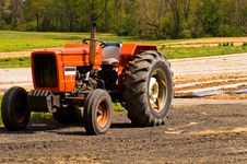 Free Red Farm Tractor In Field Royalty Free Stock Photo - 2334595