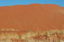 Free Large Sand Dune In Namibia Royalty Free Stock Images - 2336229