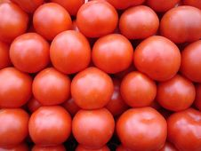 Free Tomatoes Royalty Free Stock Photos - 2338168