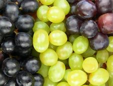 Free Grapes Royalty Free Stock Images - 2338389