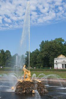 Samson Fountain,  Pertergof, Saint-Petersburg Stock Image