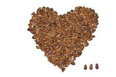 Free Nuts Pine Stock Photos - 23309133
