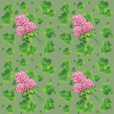 Free Green Background With Clover Stock Images - 23310324