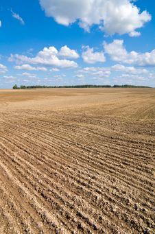 Free Rural Landscape. Royalty Free Stock Image - 23317646