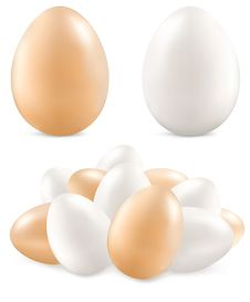 Free Eggs On White Royalty Free Stock Images - 23319199