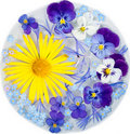 Free Yellow Daisy And Purple Flowers Stock Image - 23325681