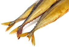 Smoked Saury Tails Stock Photography