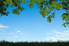 Free Spring Nature Silhouette Royalty Free Stock Image - 23321856