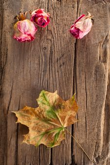 Free Dry Roses And Maple Leaf On Old Wooden Background Royalty Free Stock Images - 23327549