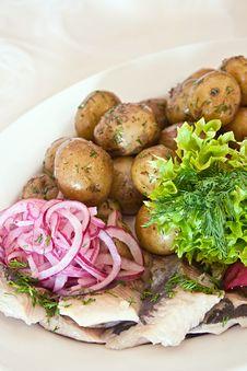 Free Marinated Herring With Potato Royalty Free Stock Photography - 23329737