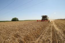 Free Combine Harvester Royalty Free Stock Photos - 23347918