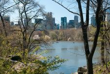 Free View Of Central Park Royalty Free Stock Photos - 23348288
