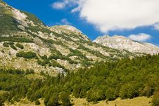 Free Mountain Scenery, National Park Durmitor Royalty Free Stock Photography - 23348717