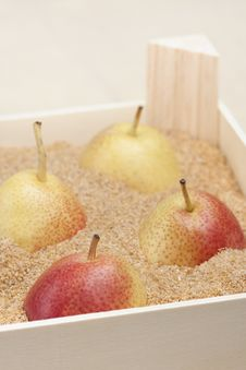 Free Asian Pears In A Box Filled With Sand Stock Image - 23350941