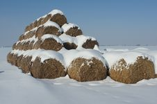 Free A Straw Is In The Snow-bound Field Royalty Free Stock Images - 23351099