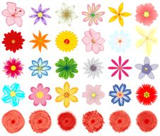 A Collection Of Flowers For The Design. Royalty Free Stock Photography