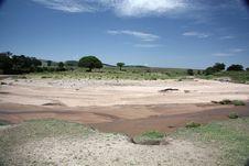 Free Dry Mara River Royalty Free Stock Photos - 23354928