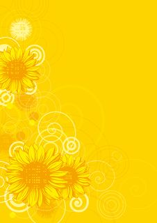 Free Sunflowers Background Stock Images - 23355534