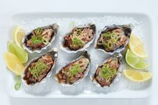 Free Oysters Kilpatrick Top View Stock Photo - 23356150