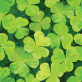 Free Seamless Pattern With Clover Leaves Stock Image - 23361211