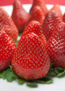 Free Strawberry Stock Images - 23363824