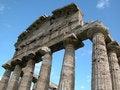 Free Paestum Royalty Free Stock Photos - 23368448