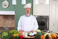 Free Young Chef Preparing Lunch Royalty Free Stock Photography - 23377547
