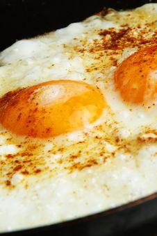 Free Fried Egg Stock Photos - 23371753