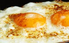 Free Fried Egg Royalty Free Stock Photos - 23371848