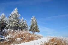 Free Winter Landscape Royalty Free Stock Photos - 23372048