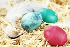 Free Easter Eggs In Straw Royalty Free Stock Images - 23375129