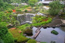 Free Beautiful Garden Stock Photos - 23376463