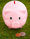 Free Piggy Bank Grazing Stock Image - 23380581