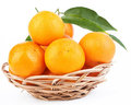 Free Tangerines Stock Images - 23388814