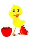 Free Happy New Duckie.. Stock Photo - 23398390