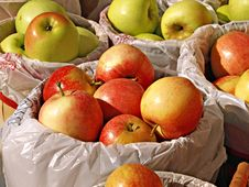 Baskets Of Apples Stock Image