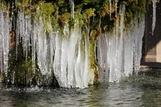 Free Icicles Royalty Free Stock Photography - 23398217