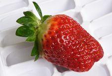 Free Strawberry Stock Photo - 2341540